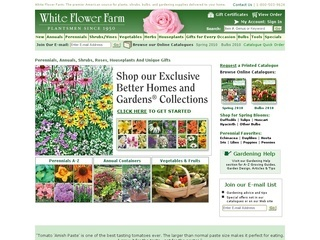 White Flower Farm coupons